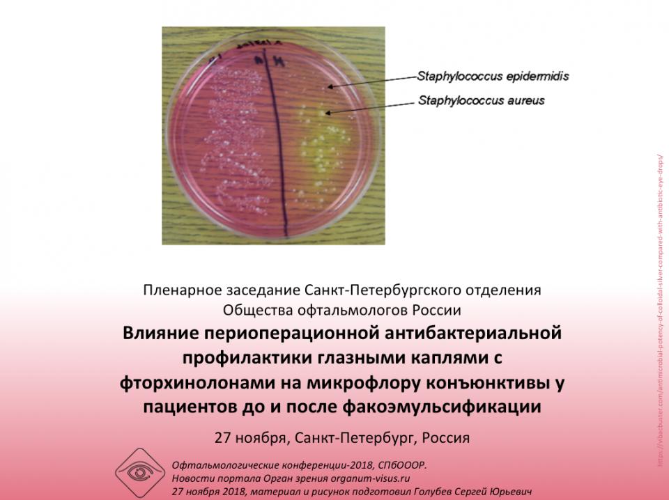 Инфекция в глазу Заседание СПбОООР 27 ноября 2018