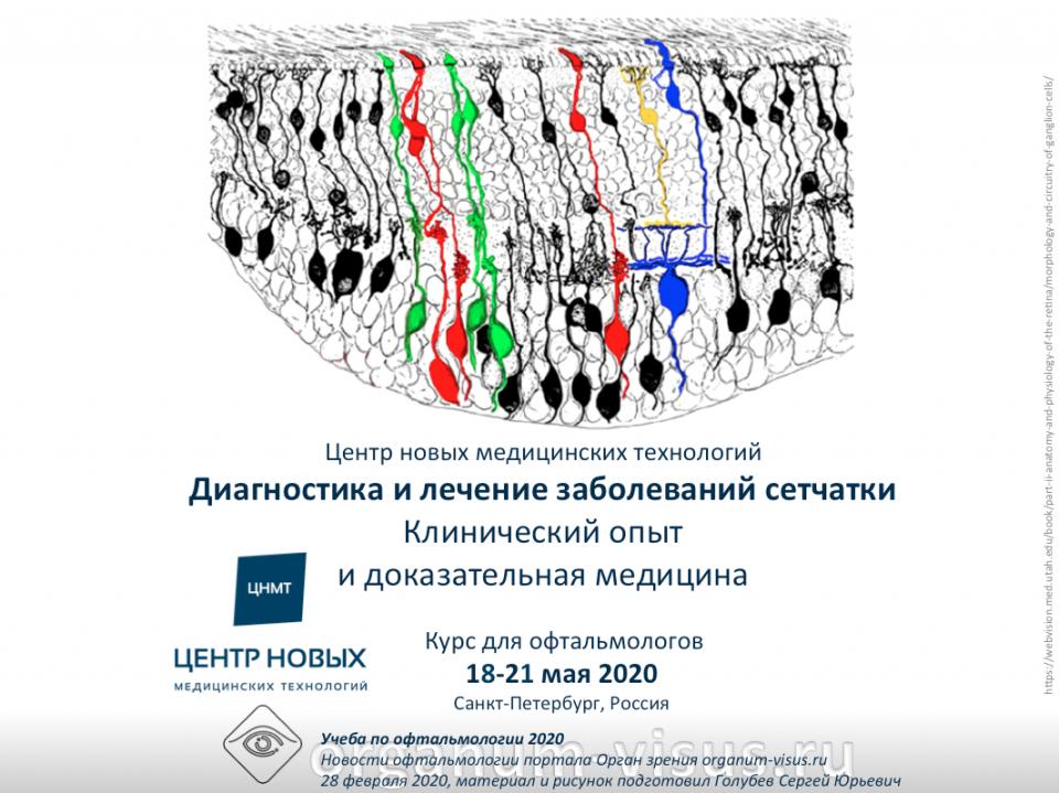 Курс для офтальмологов ЦНМТ СПб Болезни сетчатки