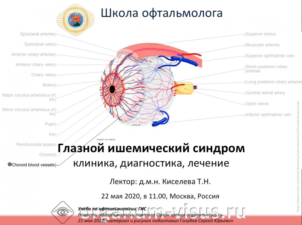 Телемедицина в офтальмологии НМИЦ ГБ им Гельмгольца ГИС