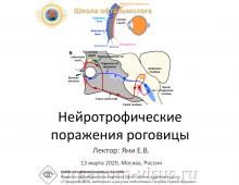 Телемедицина в офтальмологии НМИЦ ГБ им Гельмгольца Роговица