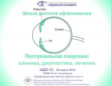 Школа детского офтальмолога ШДО 13 Москва Россия